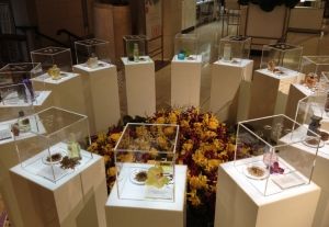 mitre acrylic boxes on plinths with flowers